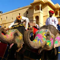Elephant at Amber fort