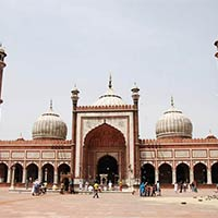 Golden Triangle by Train Tour
