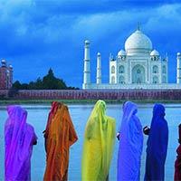 Taj, Temples and Tigers