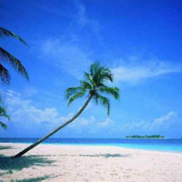 Best of Kerala Tour Package for Couple