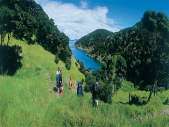 New Zealand Northern Escape Tour