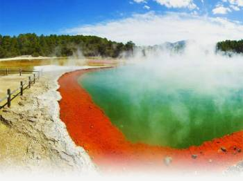 Auckland Rotorua Tour Package