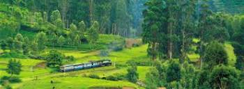 05 Nights & 06 Days for Bangalore, Coorg, Ooty and Coimbatore Package