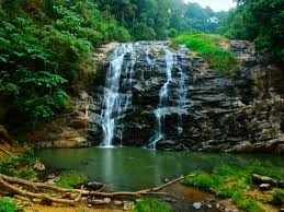 05 Nights & 06 Days in Bangalore, Coorg, Ooty and Coimbatore Tour