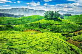 07 Nights/08 Days Kerala Tour Package