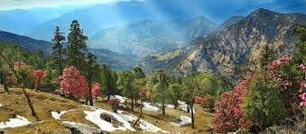 05 Nights & 06 Days Nanital, Kasauni with Jim Corbett Tour Package