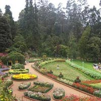 Enchanting Ooty Tour