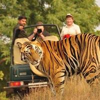 Delhi - Mussoorie - Corbett - Nainital – Delhi Tour