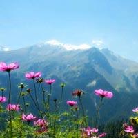 Thimphu - Punakha - Paro Package