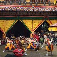 Paro Festival Tour