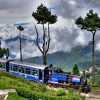Magic Mountain - Darjeeling Tour