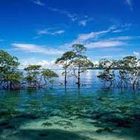 Andaman and Nicobar Islands Tour