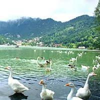 Nainital - Corbett with Almora Tour