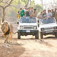 4 Jeep Safaris Tour
