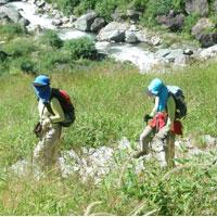 Kuari Pass Trek Tour ( Ibex Garhwal Himalayas - Moderate Trek )