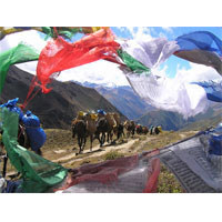 Druk Path Trek Tour