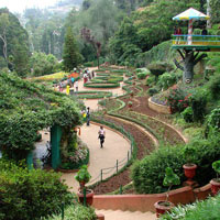 Coimbatore - Ooty - Coimbatore Tour