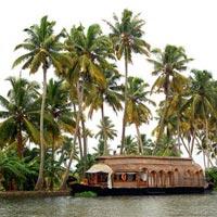 Kerala Hill Station & Backwaters Honeymoon Tour