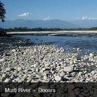 Dooars - Duars Tour - Buxa, Jaldapara Gorumara Package  Tour - 06 Nights and 07 Days