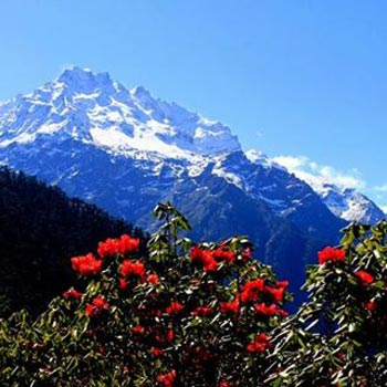 Pleasure of Sikkim-Darjeeling Tour