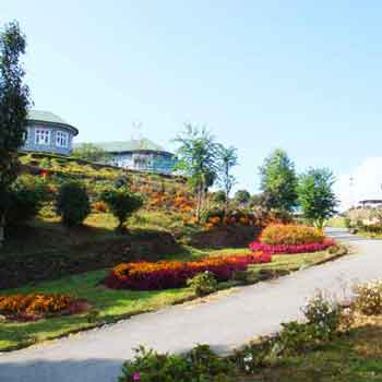 Best of Darjeeling-Sikkim Tour