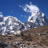 Nepal & Lumbini Tour