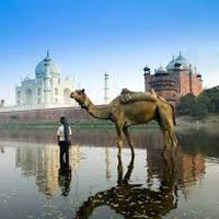 North and Central India Heritage Tour