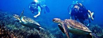 Discover  Mauritius & Dubai Tour