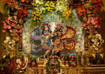Vrindavan Darshan Tour