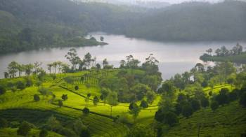 Graceful Kerala - Deluxe Tour