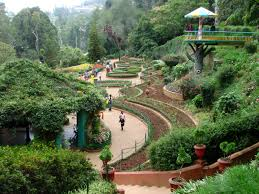 Ooty Tour For 2 Nights 3 Days