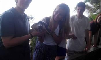 Sri Lanka Turtle Conservation Program Tour