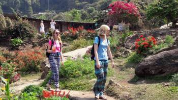 Chiang Mai Volunteer Program Tour