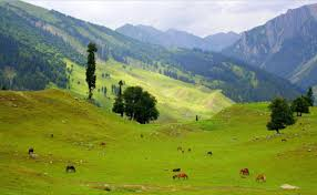 Kashmir Package 5 Days