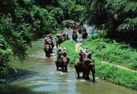 Odisha Wild Life Tour