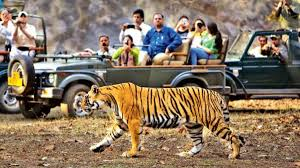Weekend Getaway Corbett Tour
