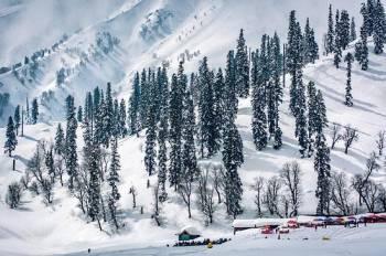 Srinagar Special Tour