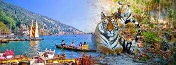 Jim Corbett Nainital Tour 3 Night 4 Days