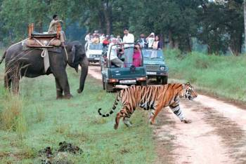 1 Night 2 Days Jim Corbett Tour