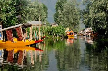 Natural Beauty of Kashmir ( 7N-8D )