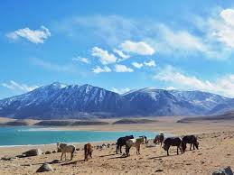Ladakh Tour 7 Days