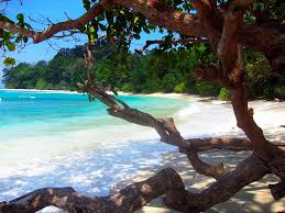 5 Nights / 6 Days Andaman Tour
