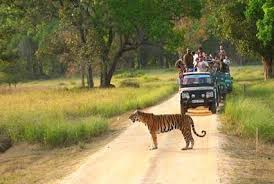 Kanha Weekend Tour