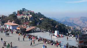 Calling Tour Shimla Package