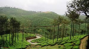 Extravagant Kerala Tour