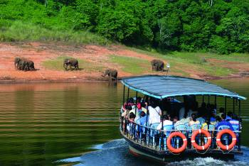 Mesmerizing Thekkady at Sterling Thekkady 2N Weekday(3 Star)