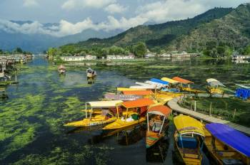 Srinagar Break at Lemontree - With flights