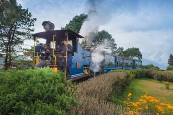 Darjeeling Deluxe Package for 4 Days