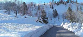Manali Premium Package for 05 Nights / 06 Days with Volvo