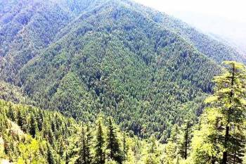 Shimla and Manali 3 Star Package For 06 Days